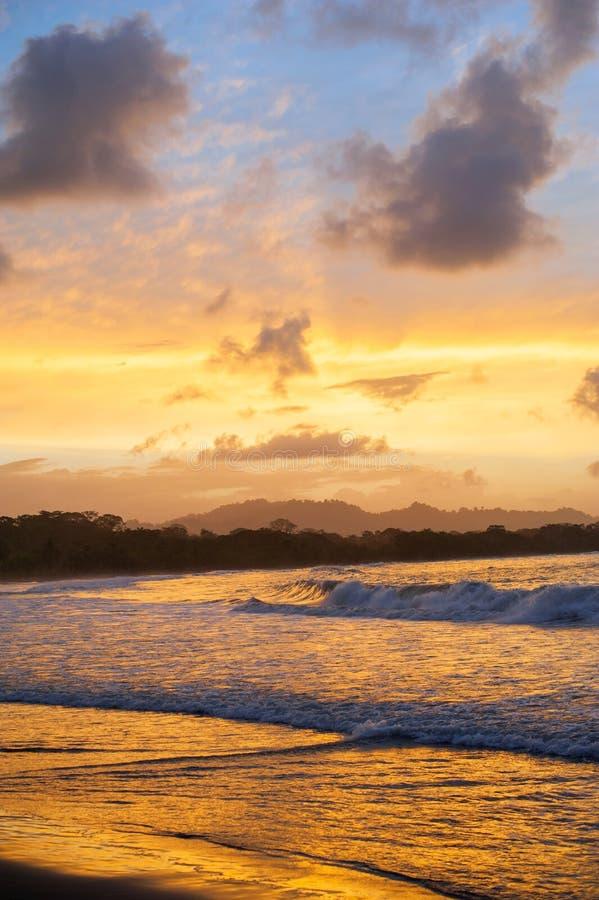 在海水的天空反射,金黄日落垂直backgrou 库存照片