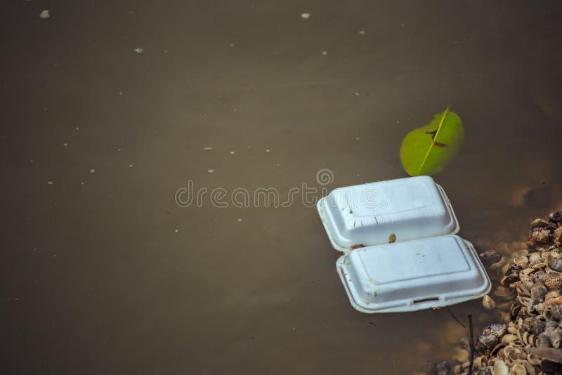 在海水的泡沫箱子 免版税库存照片