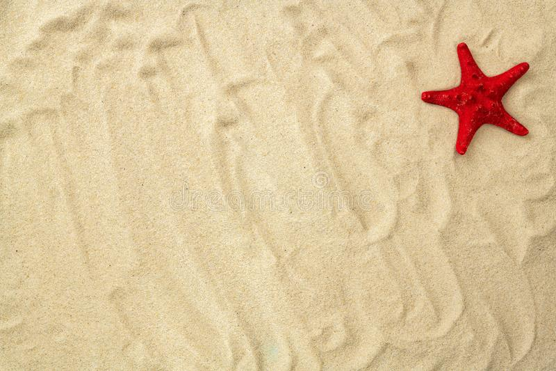 在海沙背景的海星与拷贝空间 纹理轻的沙子 概念海滩假日或假期 E 库存图片