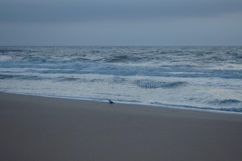 在海洋、白色天空和沙子的日出 库存图片