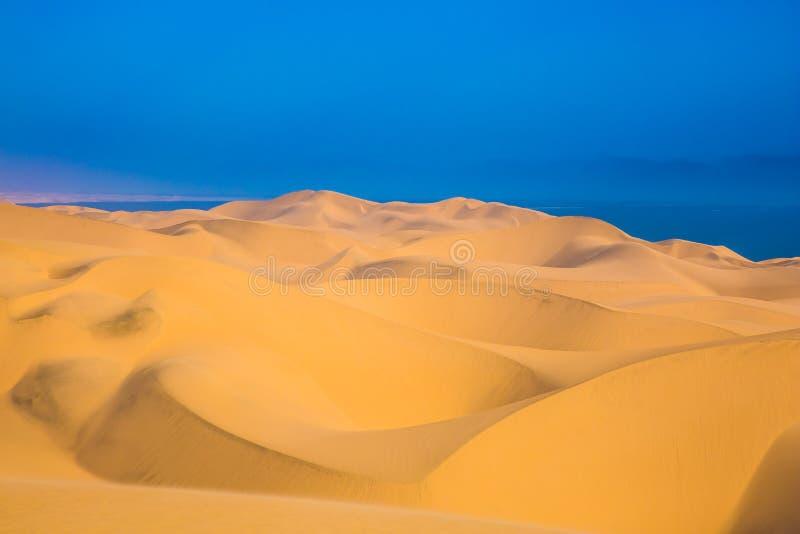在海洋岸的大沙丘 图库摄影