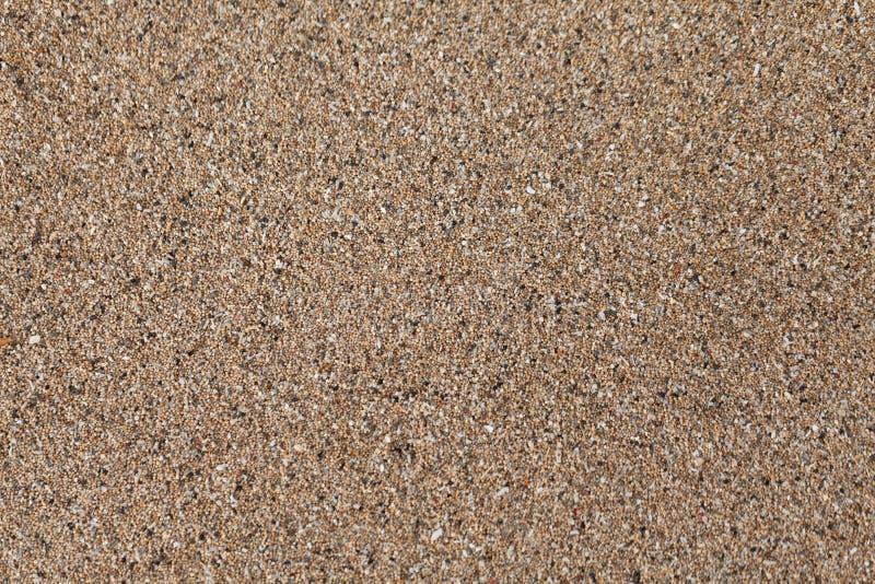 在海洋岸纹理背景的干燥沙子 图库摄影