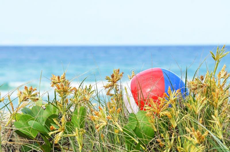 在海洋沙丘草的背景五颜六色的海滩球  免版税库存图片