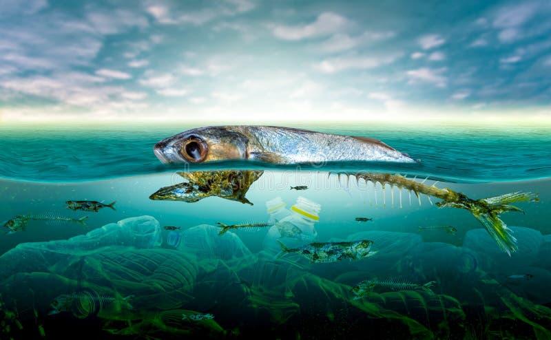 在海洋环境问题动物的塑料污染在海不可能居住 并且在海洋导致塑料污染 免版税库存照片