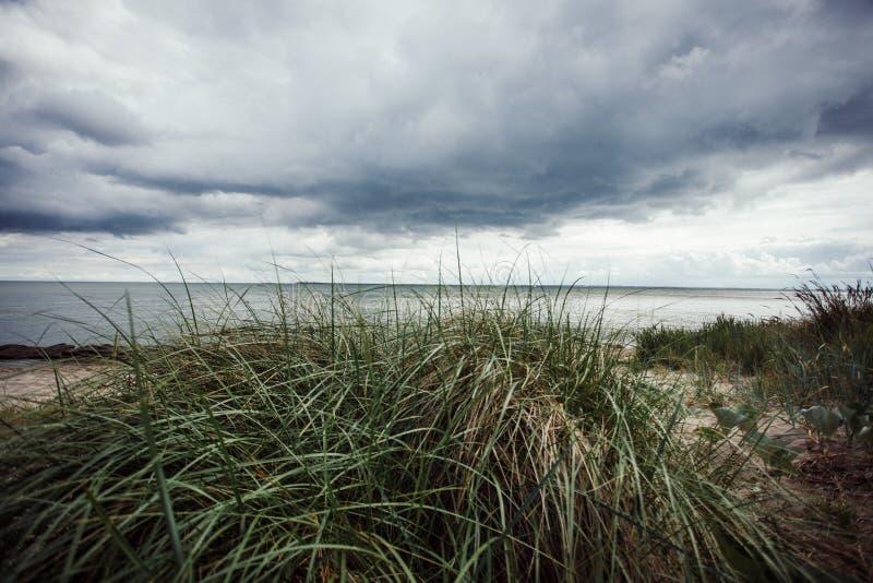 在海洋的小沙丘 免版税库存图片