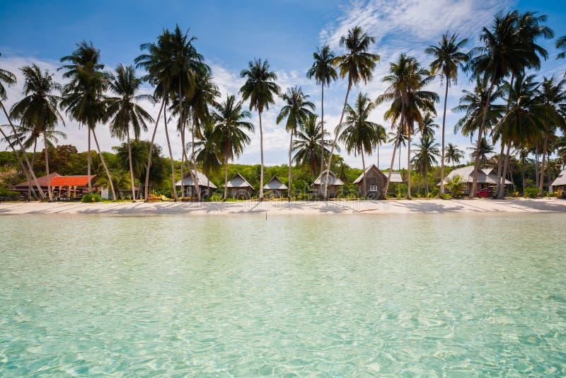 在海洋的海滩在Tropicana在清楚的天空和棕榈树下 免版税库存图片