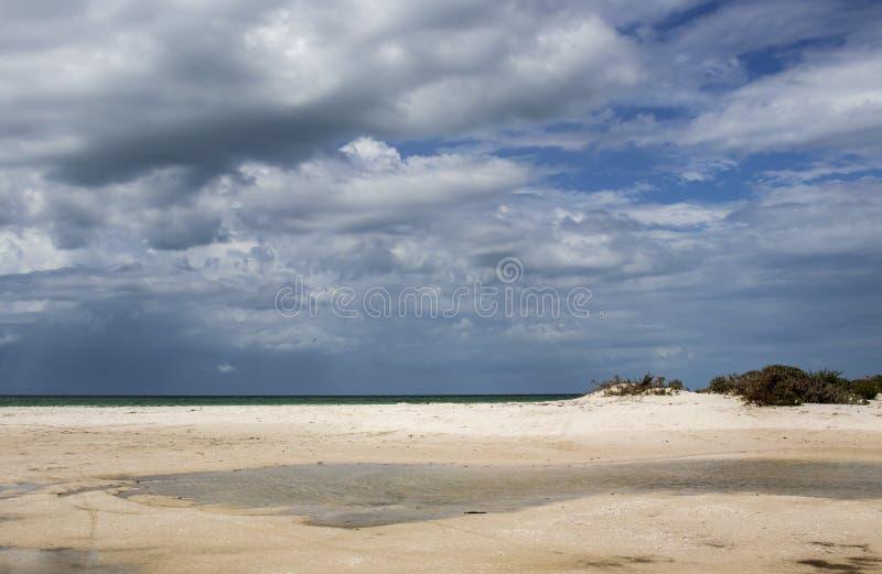 在海洋的风雨如磐的cloudscape有沙子海滩和水水坑的和在前景的小沙丘-在天空的鸟飞行 免版税库存照片