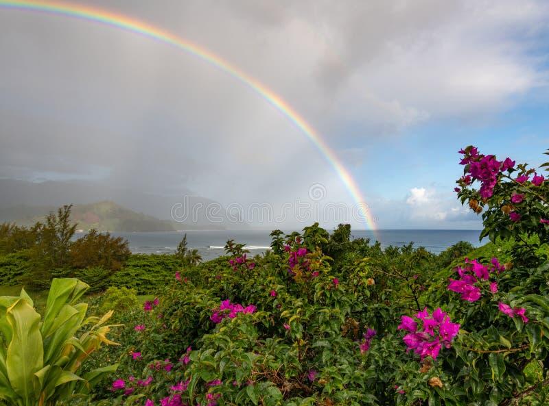 在海洋考艾岛,夏威夷的充满活力的彩虹 免版税图库摄影