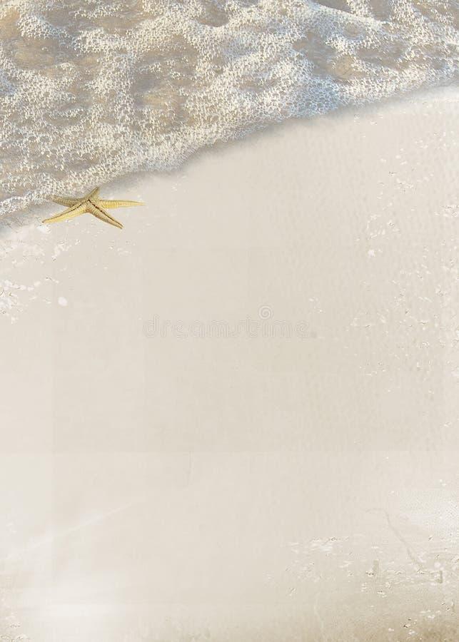 在海浪的海滨海星 向量例证