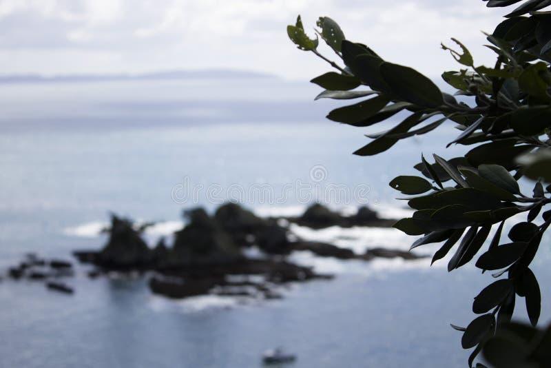 在海湾的岩石 免版税库存照片