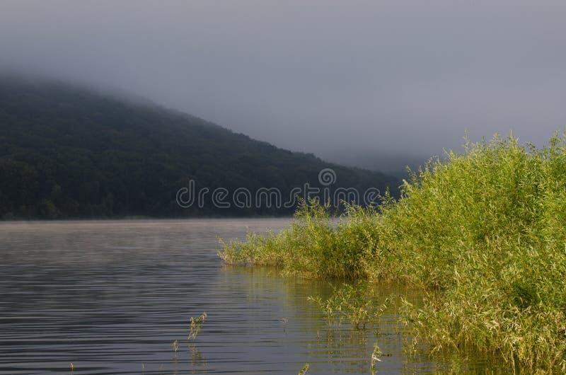 在海湾的有雾的早晨以山为背景 库存图片