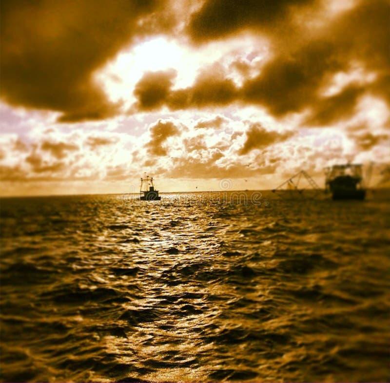 在海湾的虾小船 免版税库存照片