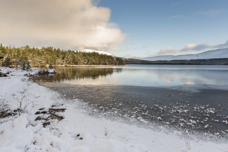 在海湾Morlich的冬天场面在苏格兰的Cairngorms国家公园 库存照片