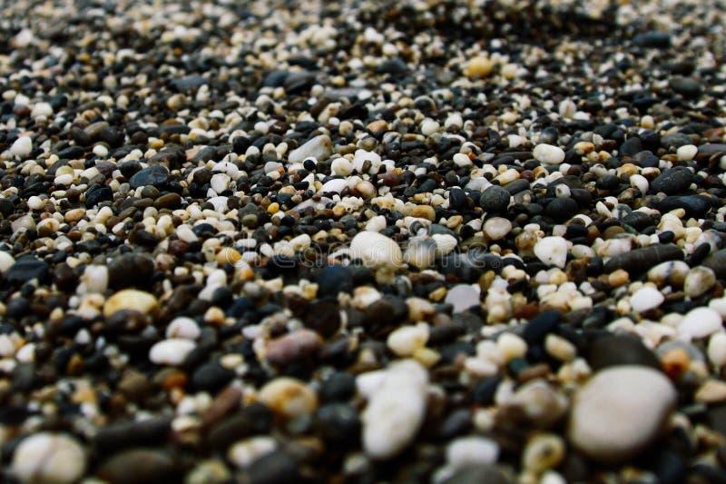 在海滨的海小石头 免版税库存照片