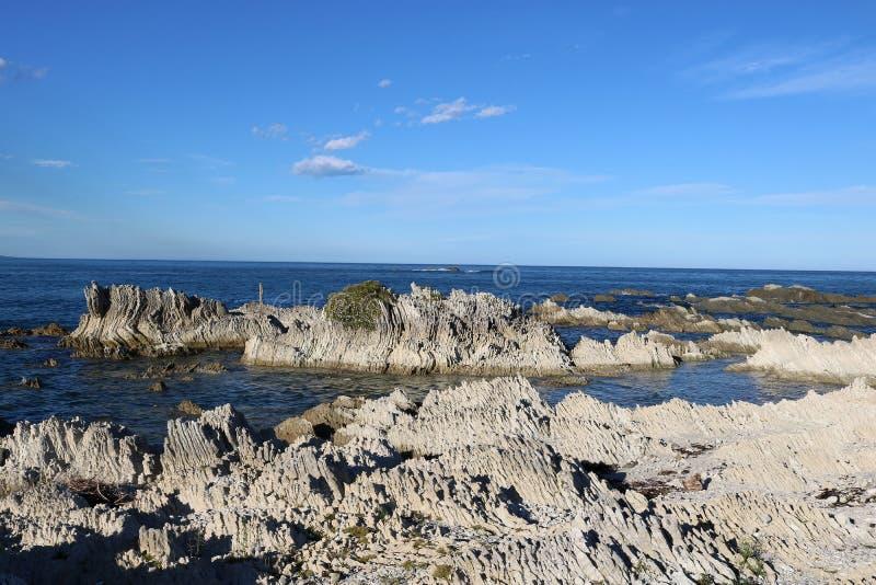 在海滨, Kaikoura,新西兰的被折叠的岩石 免版税库存照片