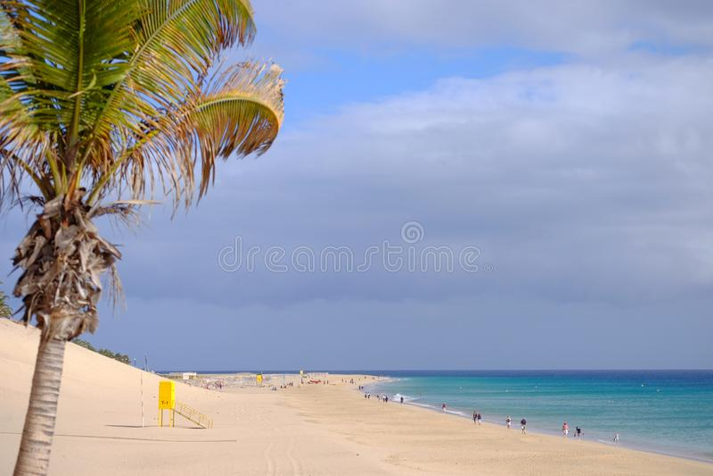在海滩与金黄沙子和海洋的看法在Morro Jable,费埃特文图拉岛 免版税库存图片