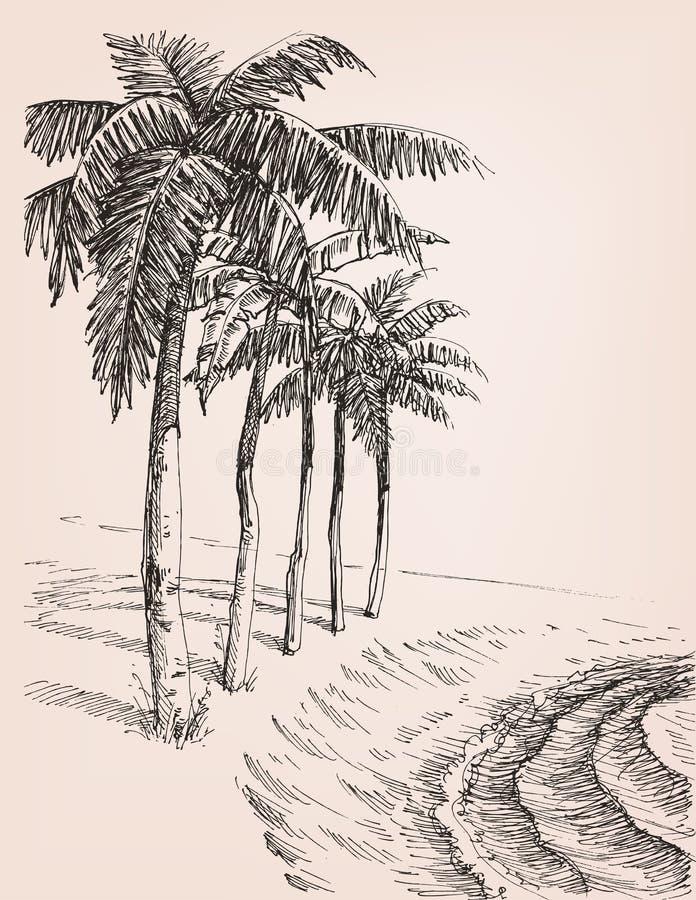 在海滩图画的棕榈树 库存例证