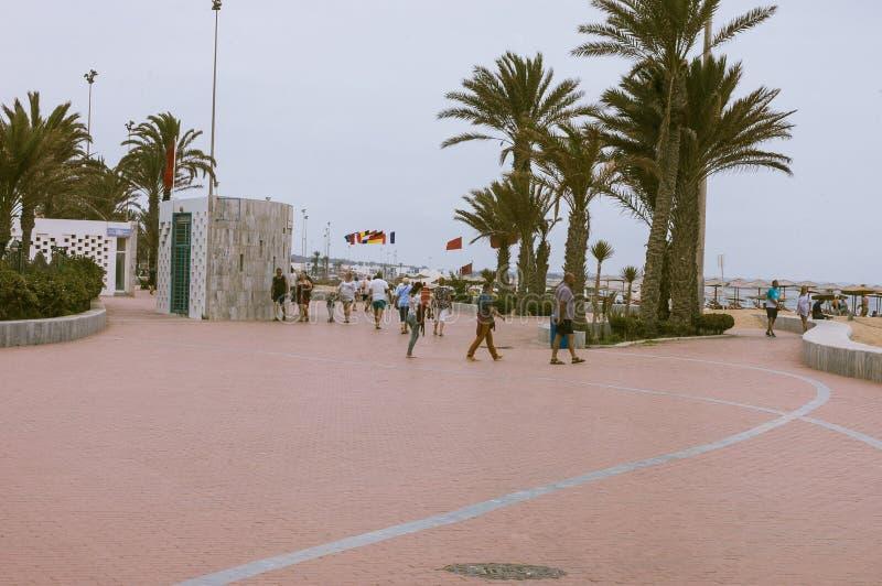 在海滩摩洛哥附近的阿加迪尔公园 图库摄影