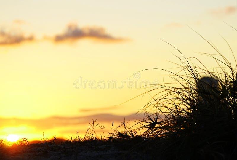 在海滩沙丘后的背景日落 免版税库存图片