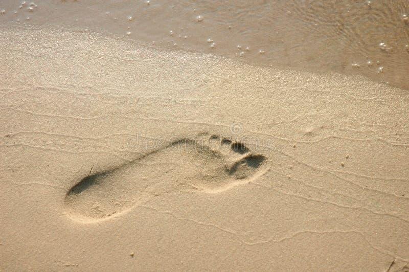 在海滩沙子的脚印 免版税库存照片