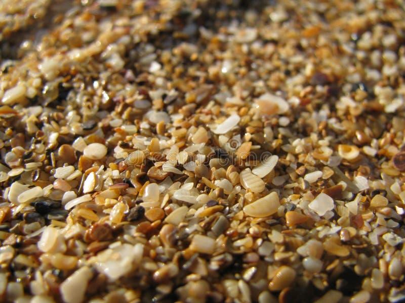 在海滩沙子 库存照片