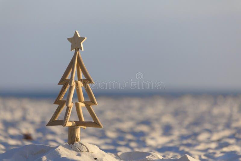在海滩清早光的圣诞树 免版税库存照片