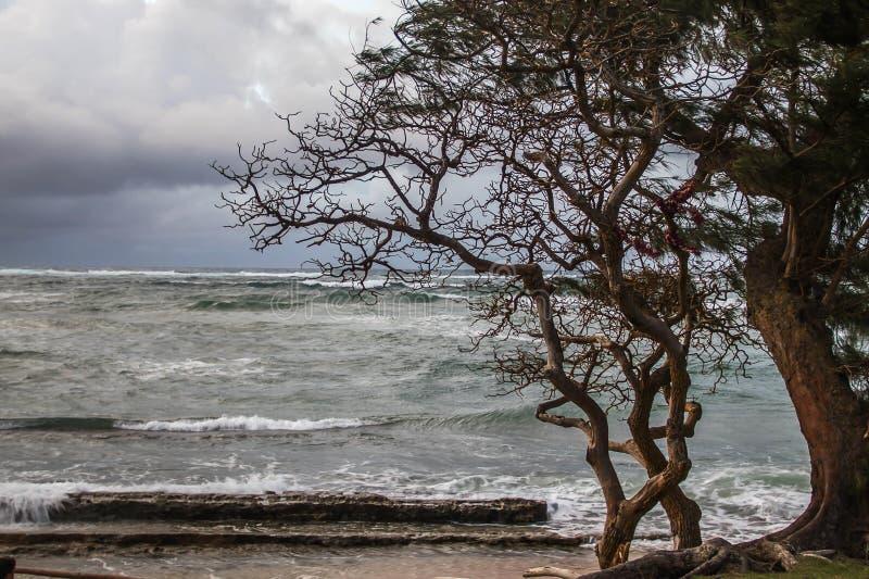 在海滩的一场风暴 图库摄影