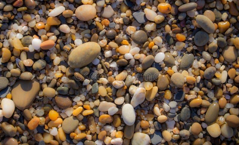 在海滩的五颜六色的小卵石 小卵石特写镜头背景 小圆的石头在阳光下 矿物概念 免版税图库摄影