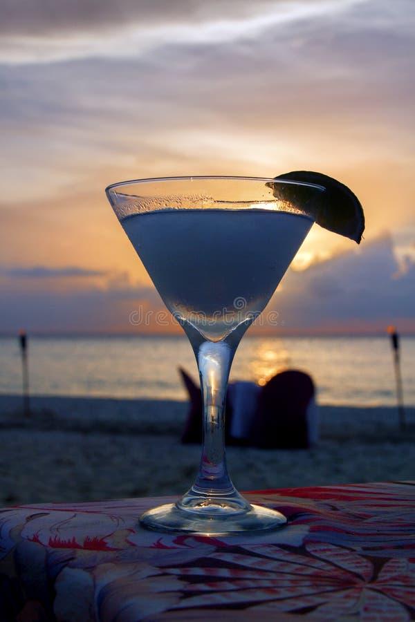 在海滩的优等的鸡尾酒与紫色,桃红色和金子日落 垂直的图象 免版税库存图片