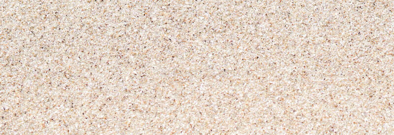 在海滩的全景干净的沙子背景的 海藻 免版税库存照片