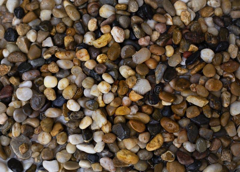 在海滩的各种各样的色的小卵石 免版税库存照片