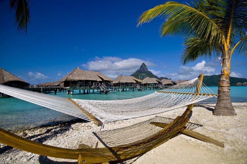 在海滩的吊床在博拉博拉岛 免版税库存照片