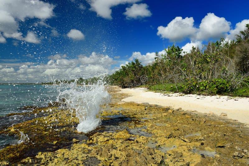 在海滩的喷泉在Bayahibe附近的多米尼加共和国 免版税图库摄影