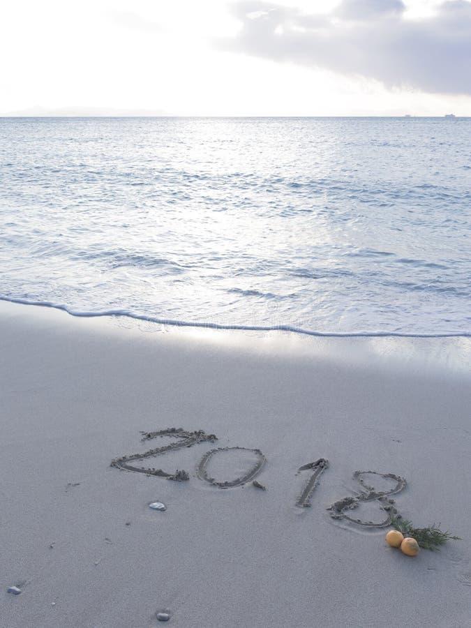 在海滩的图2018年,垂直 图库摄影