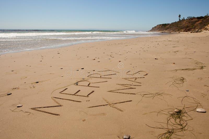 在海滩的圣诞节 免版税图库摄影