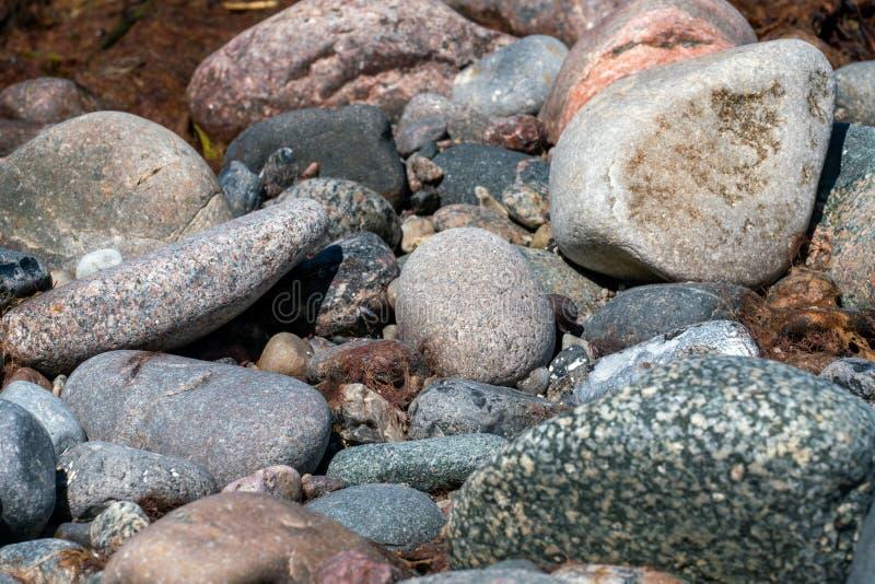 在海滩的多色的小卵石 库存图片