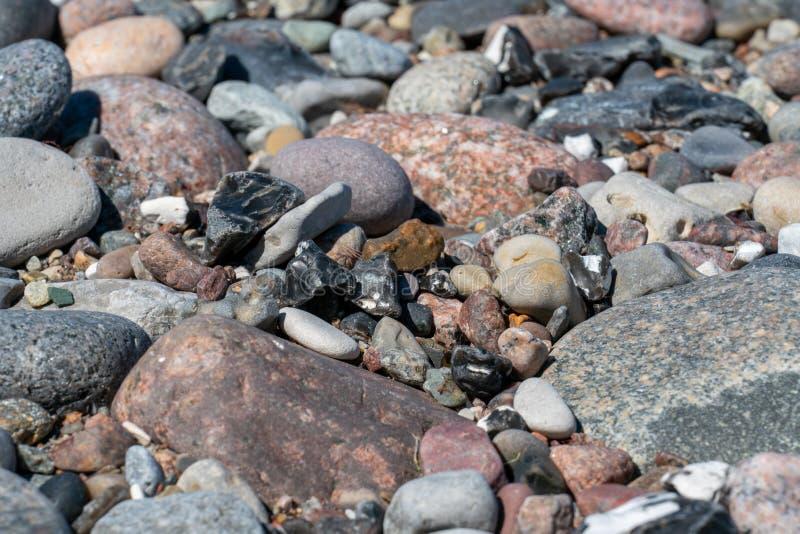 在海滩的多色的小卵石 免版税库存图片