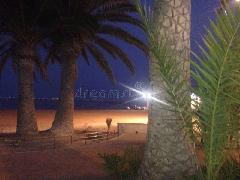 在海滩的夜 库存照片