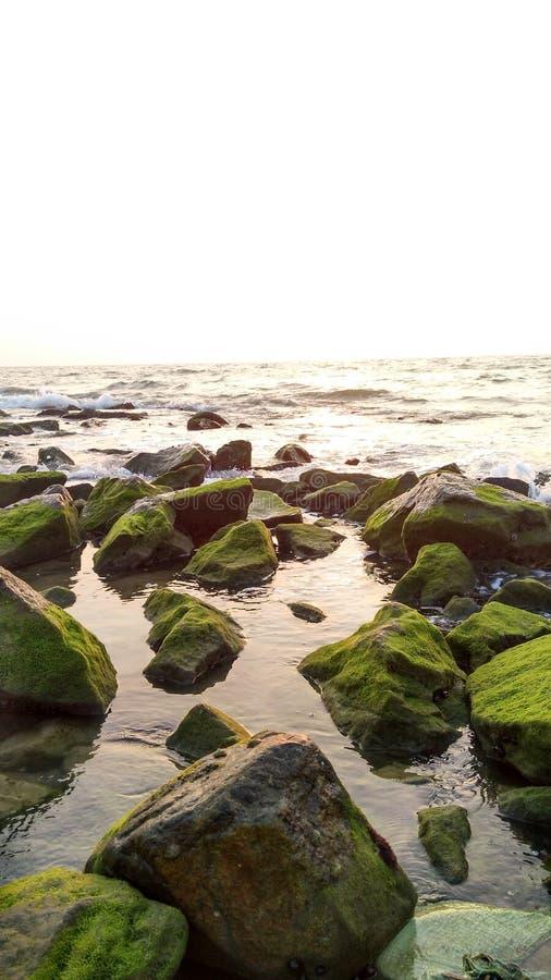 在海滩的晚上日落 库存图片