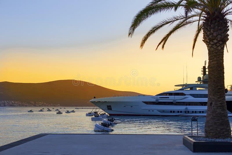 在海滩的棕榈树,与游艇的海湾在日落 库存图片