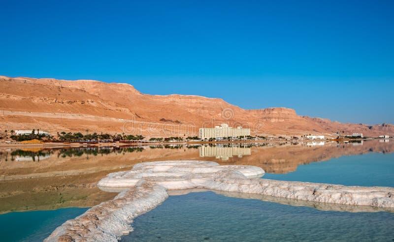 在海滩的死海盐在日出 免版税库存照片
