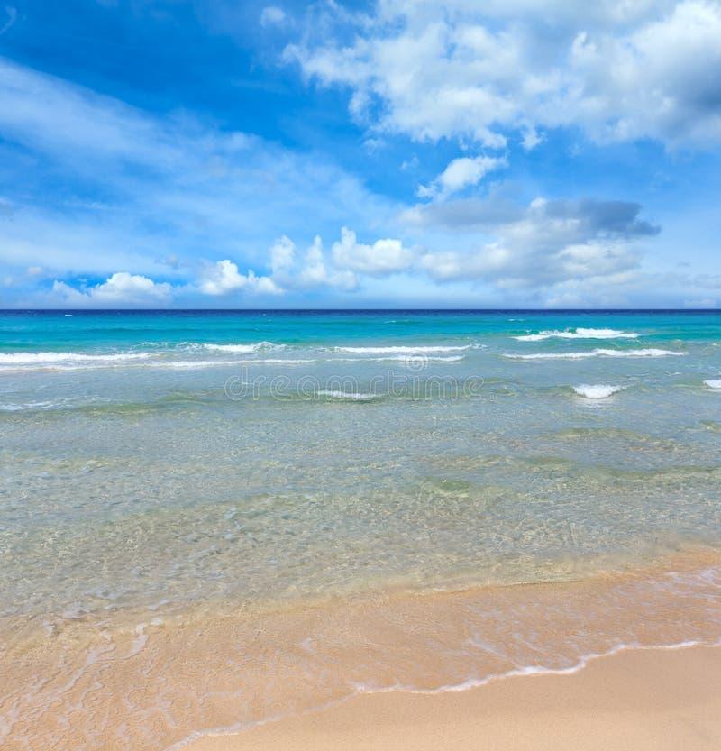 在海滩的海海浪 免版税库存照片