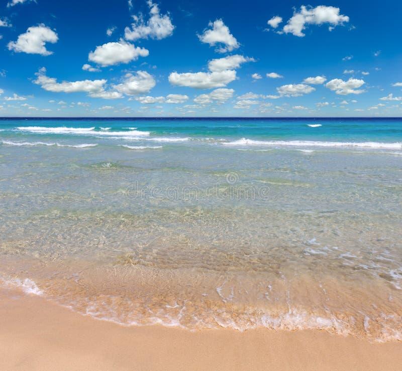 在海滩的海海浪 库存图片