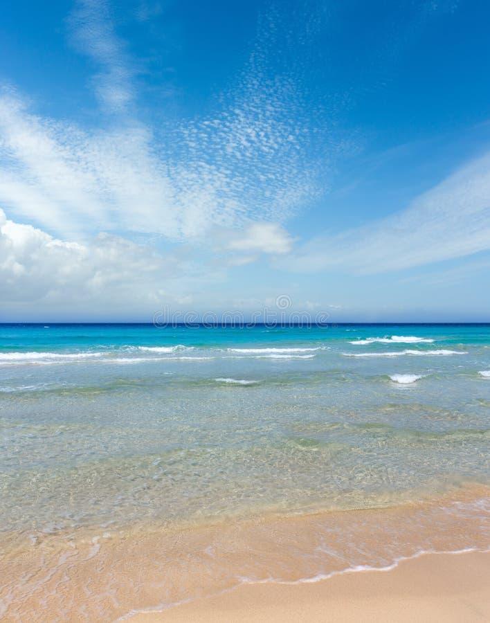 在海滩的海海浪 免版税图库摄影