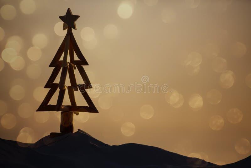 在海滩的澳大利亚圣诞节 免版税库存照片