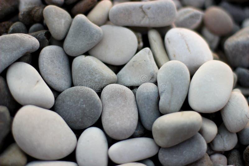 在海滩的石头,灰色石头,许多石头 免版税库存照片