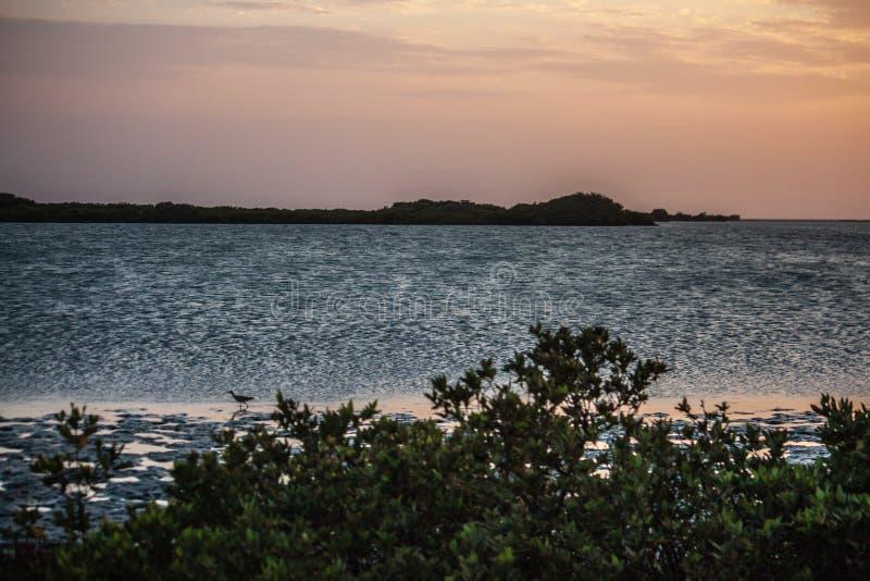 在海滩的美好和自然日落在lecheria委内瑞拉 库存图片