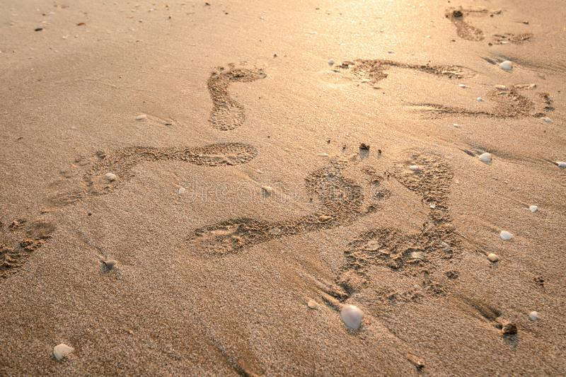 在海滩的脚印 在日落的脚步与金黄沙子 通过的天的记忆 库存照片