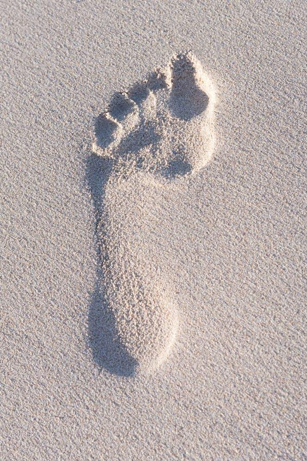 在海滩的脚印 免版税图库摄影