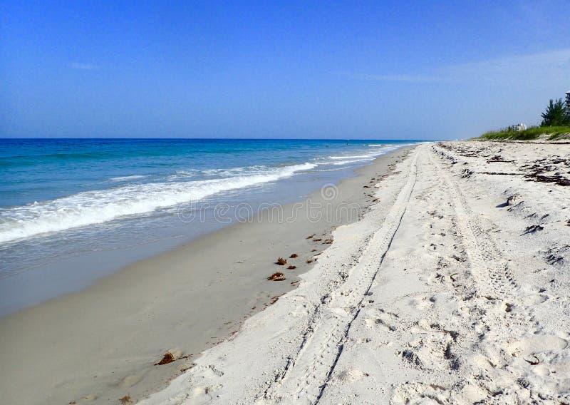 在海滩的轮胎轨道 免版税库存照片